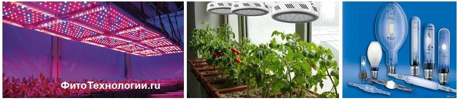 Какие из фитоламп для растений лучше