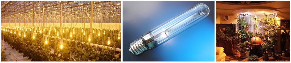 Натриевые лампы для растений ДНАЗ