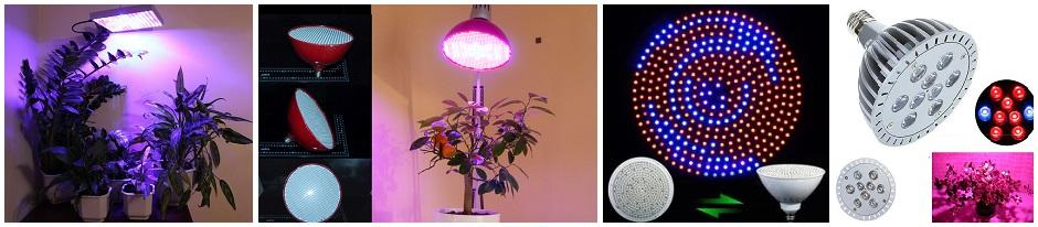 Светодиодные фитолампы для искусственного досвечивания растений и рассады